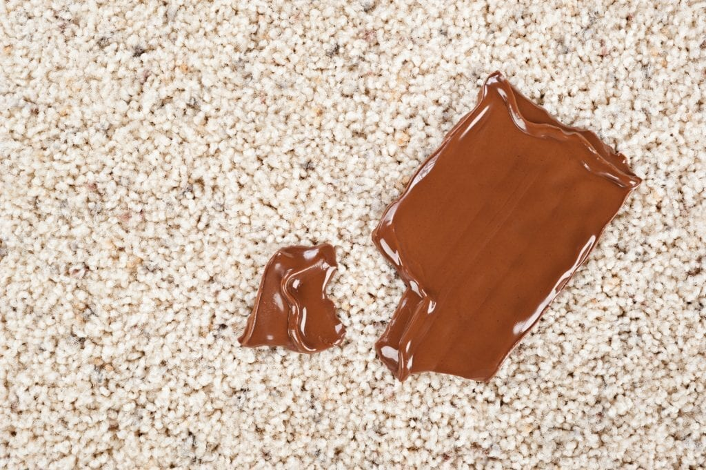 Chocolate on carpeted area