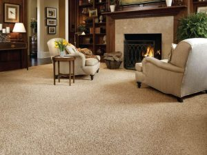 Carpet Cleaning Service for Residential Customer Showing Livingroom